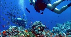 Divieto di immersioni subacquee, se non informati si ha diritto al risarcimento