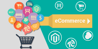 Cresce l' E-commerce