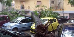 Calamità Naturali: Responsabilità